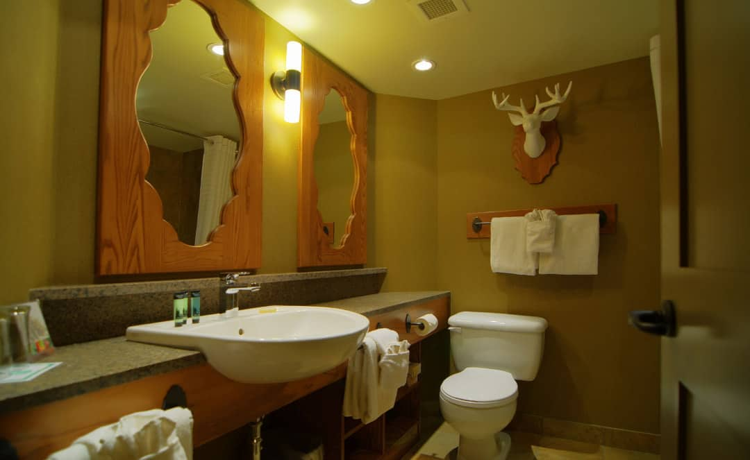 Superior Hotel Room - Bathroom