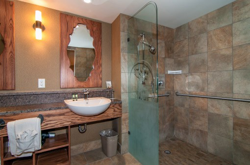 Accessible Room - Shower